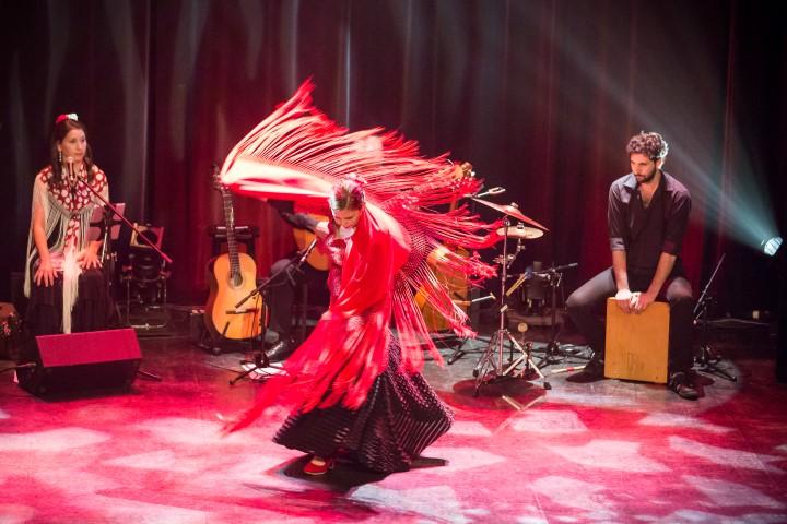 Flamenco Aqui Karine Parise (29)