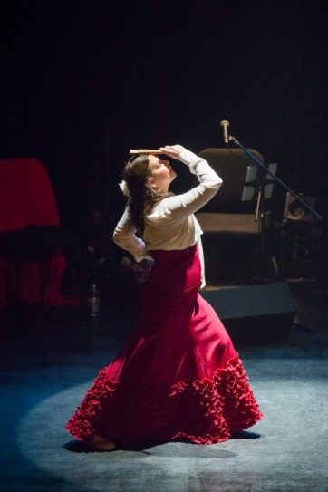 Flamenco Aqui Karine Parise (5)
