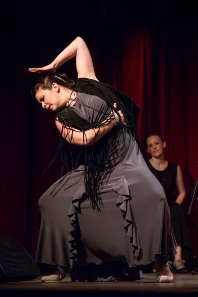 Paso a paso-flamenco (21)
